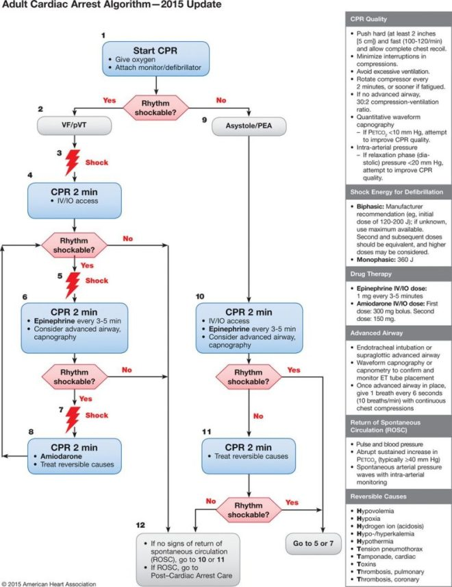 AHA 2015 adult cardiac arrest algorithm