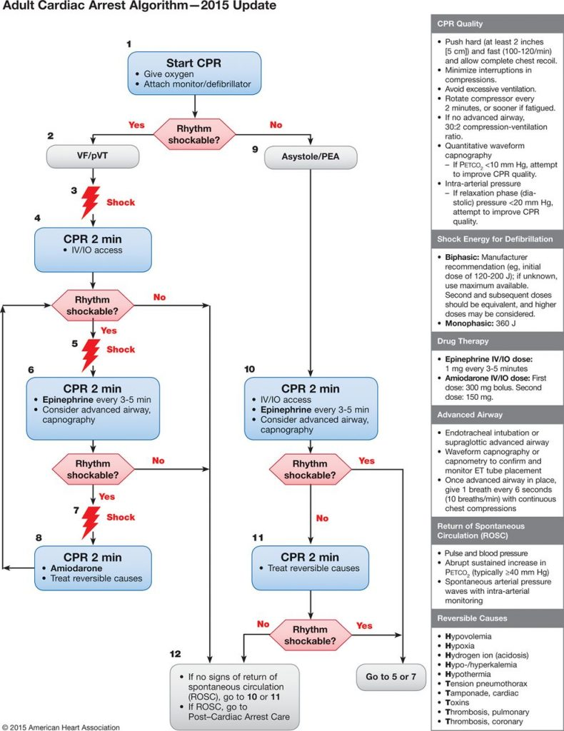 AHA 2015 adult cardiac arrest algorithm ACLS guidelines