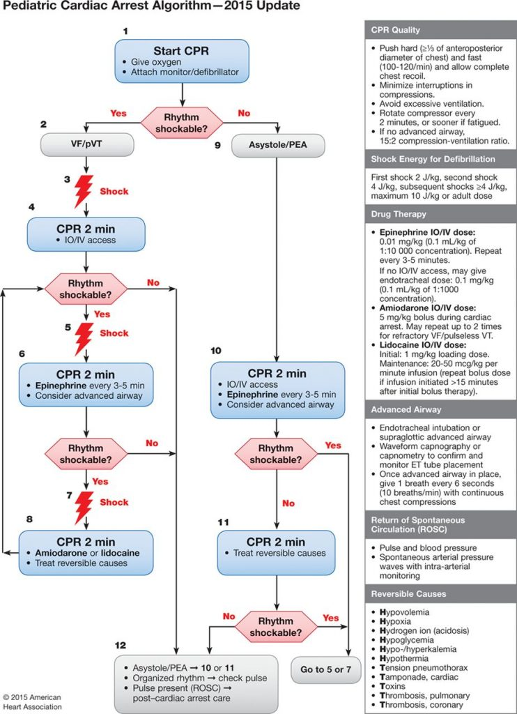 The 2015 pediatric cardiac arrest alogrithm