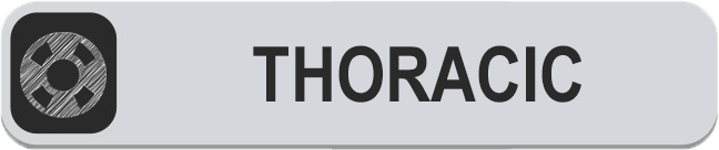 THORACIC BUTTON.png