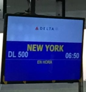 Delta Santo Domingo to New York