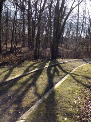 Lines along a trail