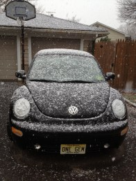 My cute little bug - front