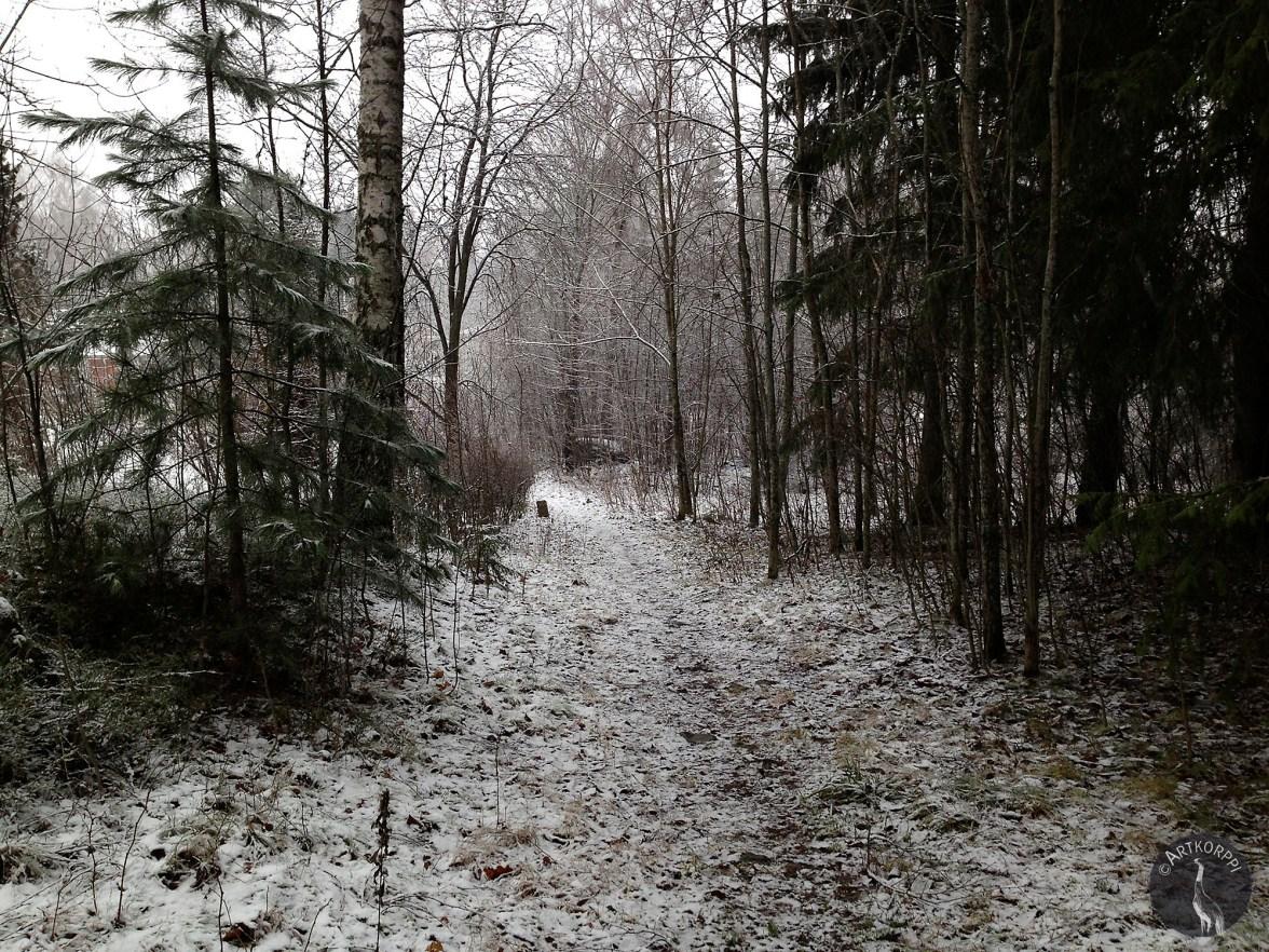 Snow lightens darkness