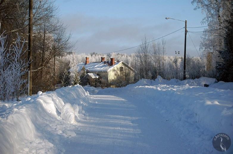 WinterStreet6719p