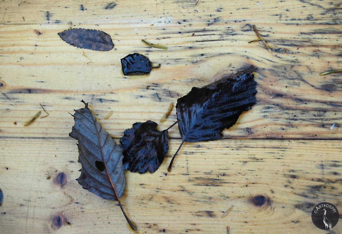trees_blackleaves4830p