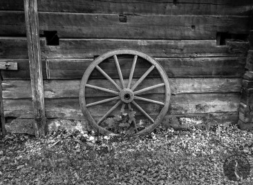 wheels_4276mvp