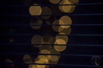 Christm_lights0250p