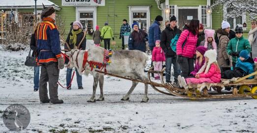 sleigh_ride_0050p