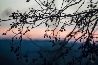 sunset_0159p