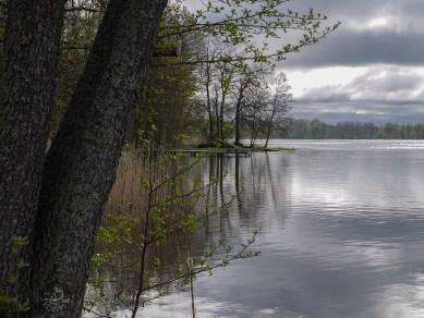 lakesideP1000304p