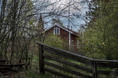 red_house_0018p