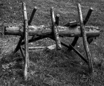 wood_P1020199_1mvp