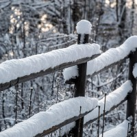 Snow On The Fence / MM 2-41