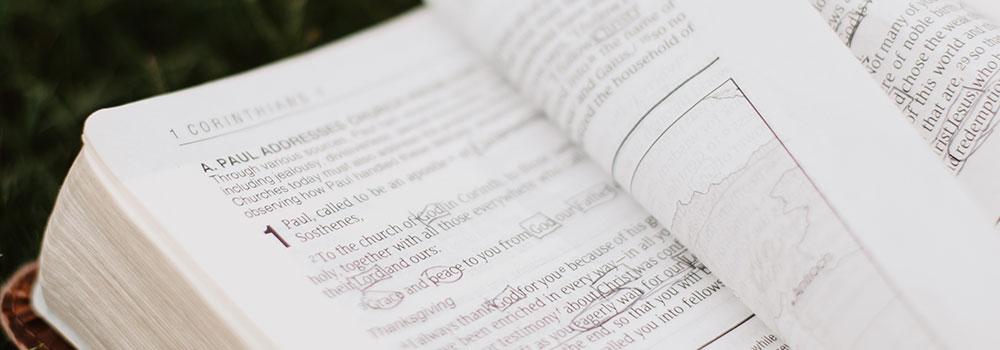 Bible Focus