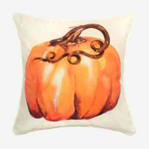 Pumpkin watercolor pillow