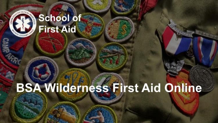 BSA Wilderness First Aid Online