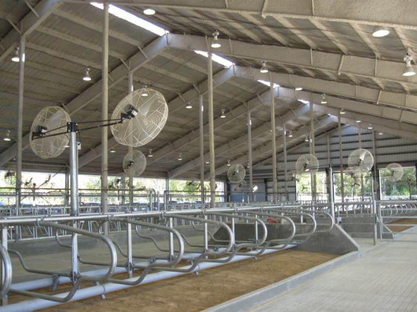 High Tech. milking facility