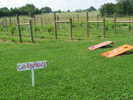 Corn Hole Game/ Vineyards