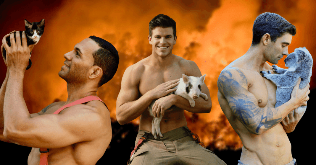 Charity Calendar Photography 2019 With Incredibly Handsome Australian Firefighters Pose With Cute Kittens