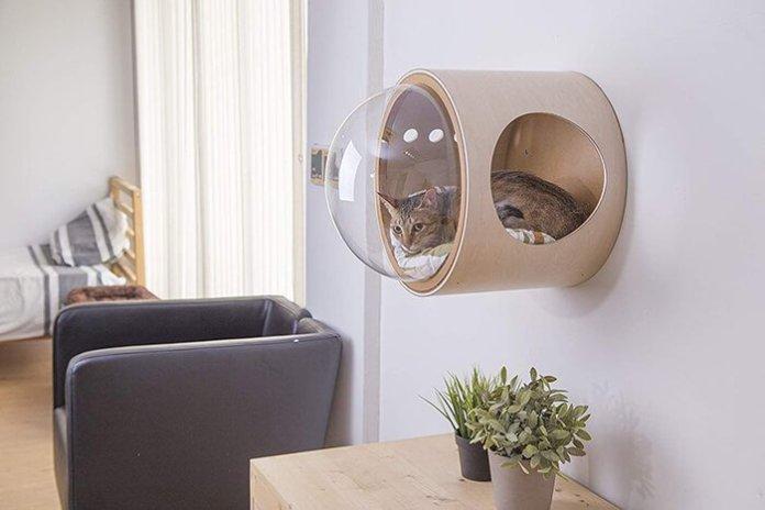 Modern glass cat house ideas