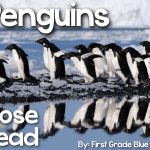 Penguin Close Read, Freebies, & More
