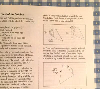 instrux in dahlia book