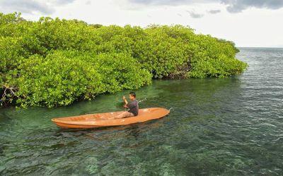 Berpetualang di 5 Objek Wisata Hutan Pulau Lombok