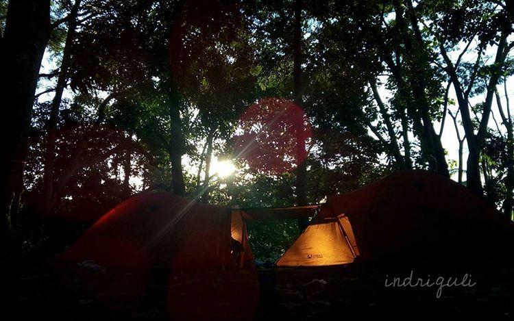 Taman Hutan Gawar Gong, sumber gambar ig @indriguli