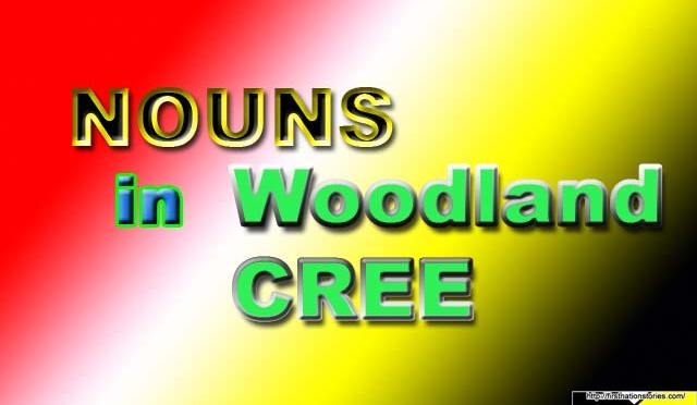 Nouns in Woodland Cree