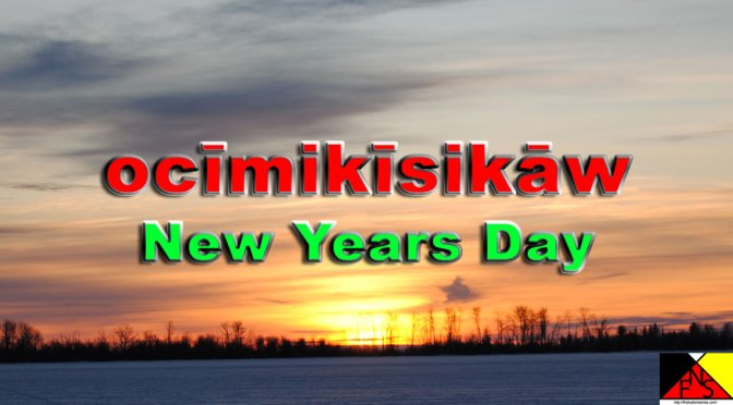 New Years Day in Woodland Cree