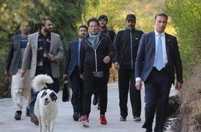 Imran Khan gains weight