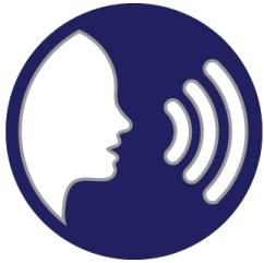 voice search content