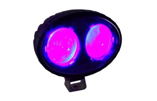 ECO Red Light