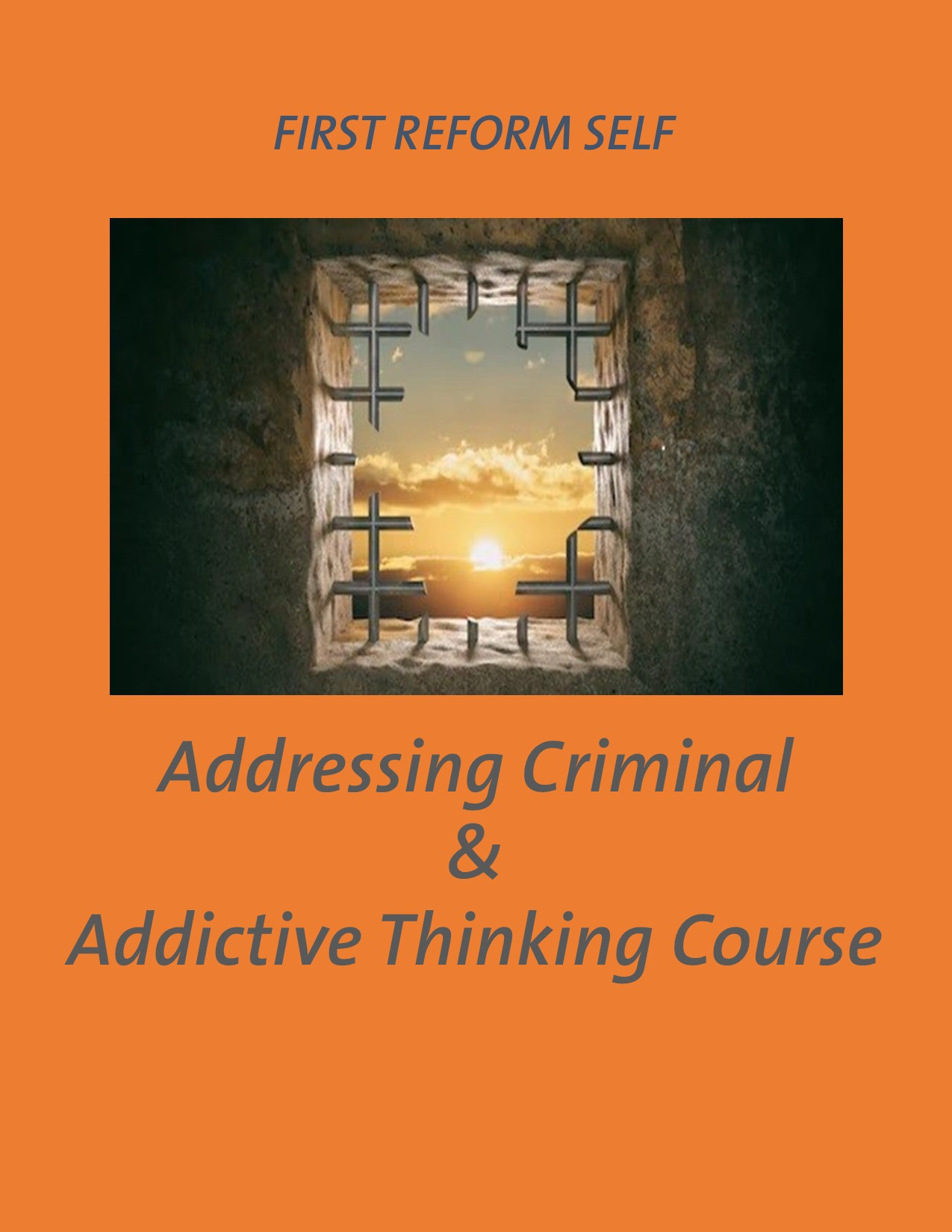 Addressing Criminal Amp Addictive Thinking Course First
