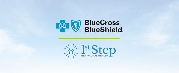 BlueCross BlueShield Insurance Coverage for Addiction ...