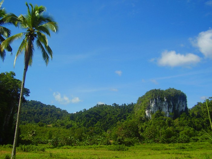 Ugong Rock in Palawan.