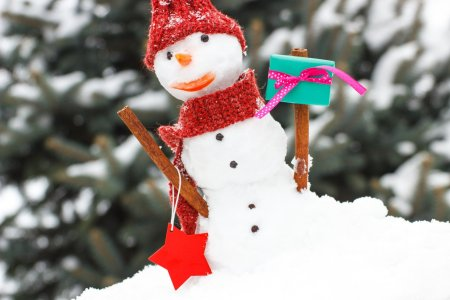 Snowman with gift for Christmas or Valentine