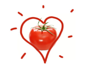 Tomatos planted by Valentines