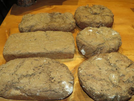 Rye sourdough loaves. Photo by Suzanne Crocker