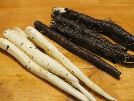 Salsify, peeled and unpeeled - photo by Suzanne Crocker