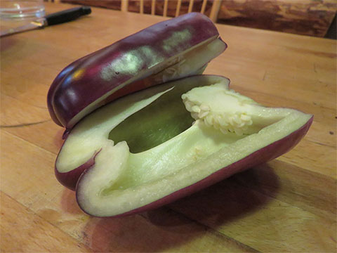 Louise Piché Planted a Patch of Purple Peppers (and a White Pumpkin)
