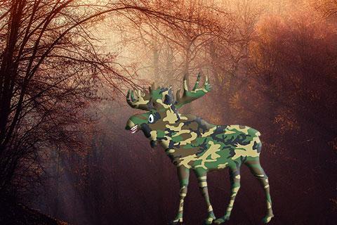 Gerard's Blog: Of Moose and Man