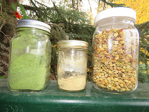 Celery Salt and Nasturtium Pepper