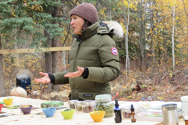 Ethobiologist Leigh Joseph conducts a tea blending workshop at the Tr'ondëk Hwëch'in First Hunt Celebration. Photo by Suzanne Crocker. Used in the production of First We Eat, a documentary by Yukon filmmaker Suzanne Crocker about eating only locally-grown foods in in Dawson City, Yukon, in Canada's North for one year.for