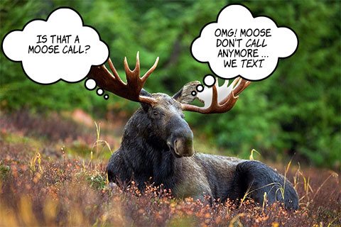 Suzanne's Blog: My First Moose Hunt