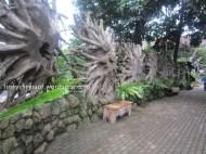 farmhouselembang-3