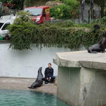 Die Zweitklässler besuchten den Wuppertaler Zoo