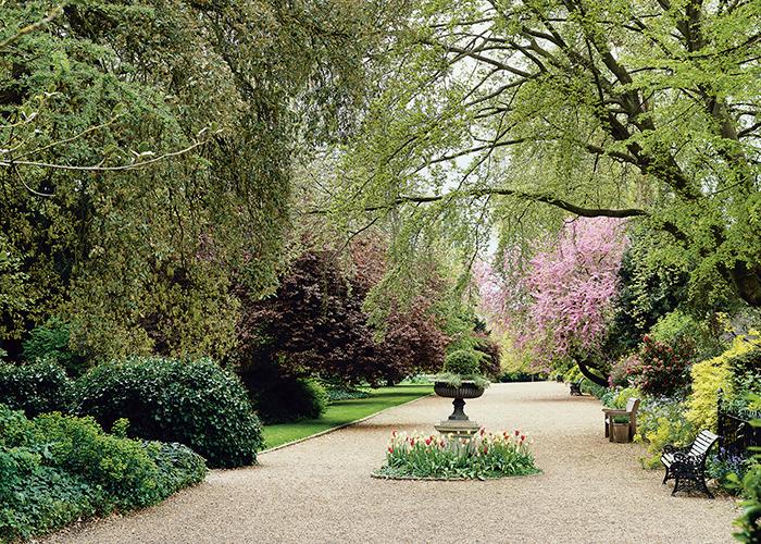 ladbroke square gardens