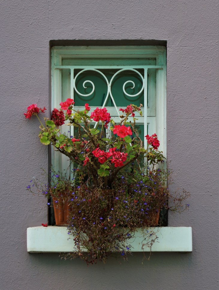 Różowe kwiaty-okno-pastelowa fasada-dom-Notting Hill-Londyn